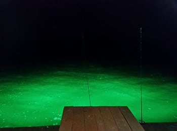 350 - green-dock-lights-1024x576